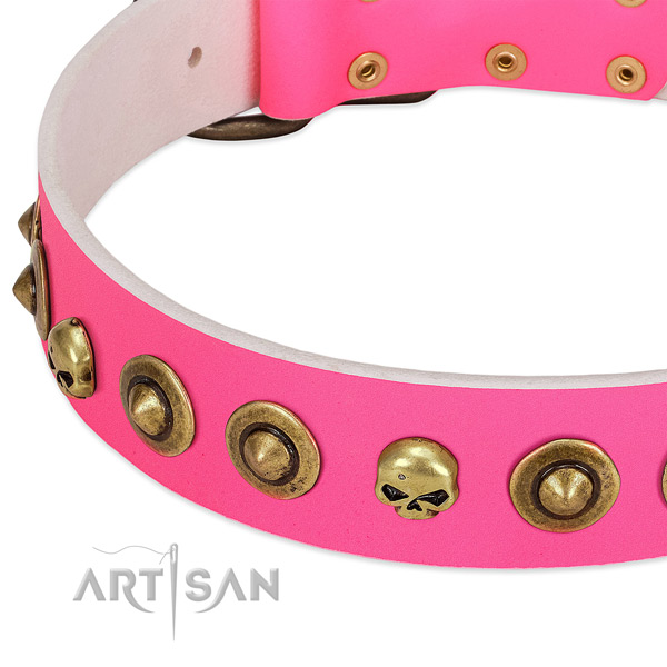 Unique adornments on full grain leather collar for your doggie