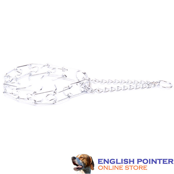 Premium-quality chrome plated prong collar for obedience training