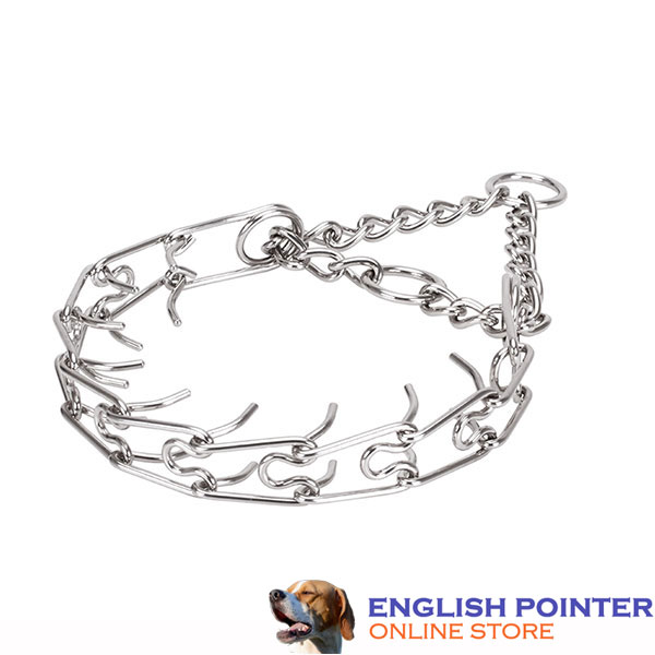 Dependable prong collar with stainless steel O-ring for attaching a leash
