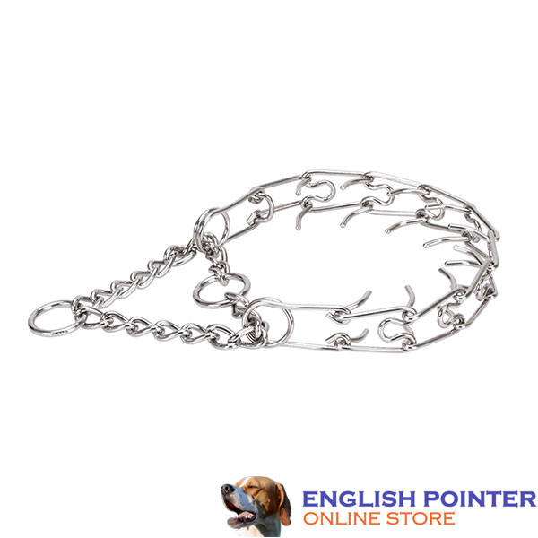 Pinch collar of reliable stainless steel for ill behaved dogs