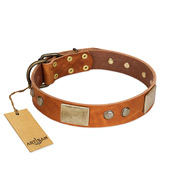"""Ancient Treasures"" FDT Artisan Tan Leather English Pointer Collar with Antiqued Plates and Studs"