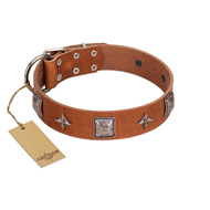 """Lucky Star"" FDT Artisan Tan Leather English Pointer Collar with Silver-Like Embellishments"