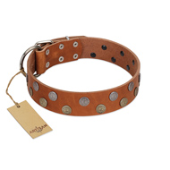 """Ancient Symbol"" Trendy FDT Artisan Tan Leather English Pointer Collar with Silver- and Gold-Like Studs"