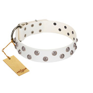 """Wild Flora"" FDT Artisan White Leather English Pointer Collar with Silver-like Engraved Studs"