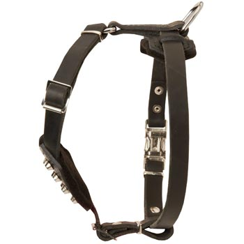 Leather English Pointer Puppy Harness for Comfy Walking