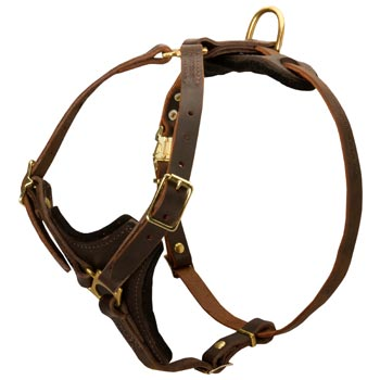 English Pointer Harness Y-Shaped Brown Leather Easy Adjustable for Best Fit