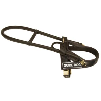 English Pointer Guide Harness Leather for Dog Assistance