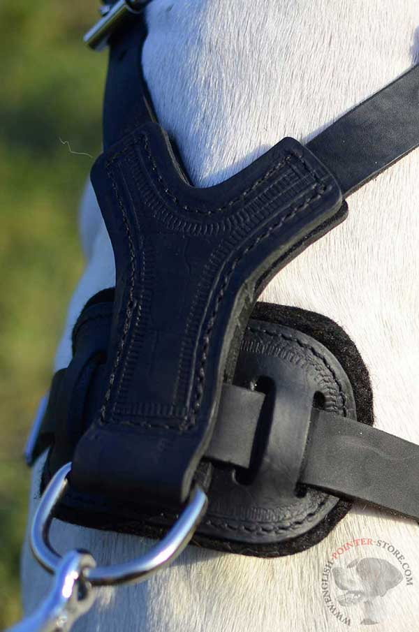 Back Plate of Leather English Pointer Harness