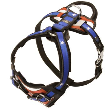 Leather SEnglish Pointer Harness with Handle Stitched to Back Plate