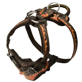 Leather Dog Harness with Handle for English Pointer Training