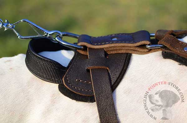 Leather English Pointer Harness Back Part with Handle