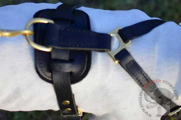 Leather English Pointer Harness Back Part with Ring
