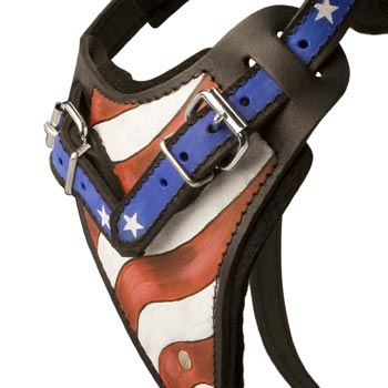 English Pointer Leather Harness With Hand Painted USA  Chest Plate