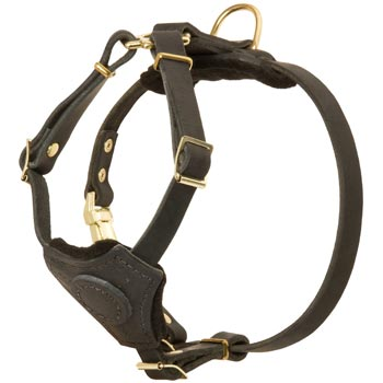 Light Weight Leather Puppy Harness for English Pointer