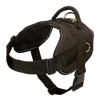 English Pointer Harness Nylon Multifunctional with Control Handle