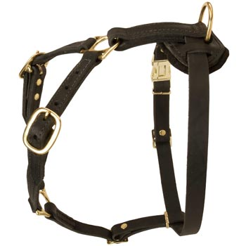 Tracking Leather Dog Harness for English Pointer