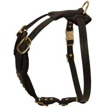 Easy Adjustable Leather English Pointer Harness