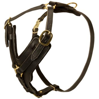 Comfortable Y-Shaped Leather Harness for English Pointer Attack  Training
