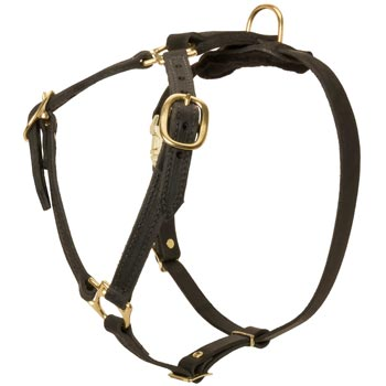 Leather English Pointer Harness Light Weight Y-Shaped for Tracking Dog