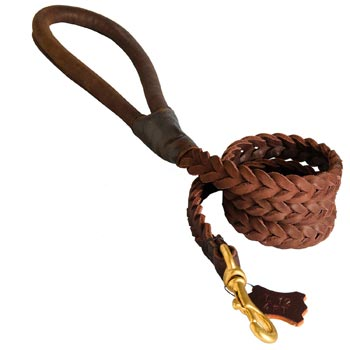 Multipurpose Leather Braided English Pointer Leash