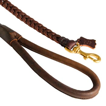 Braided Leather English Pointer Leash with Brass Snap Hook