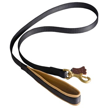 Special Nylon Dog Leash Comfortable to Use for English Pointer