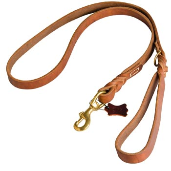 Canine Leather Leash for English Pointer