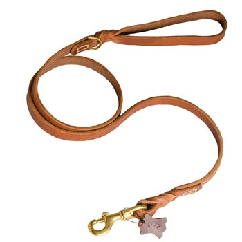 Training Leather English Pointer Leash with Handle