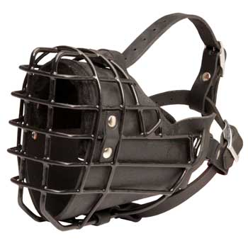 Winter Fully Wire English Pointer Padded Muzzle Cage