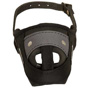 Nylon and Leather English Pointer Muzzle with Steel Bar for Protection Training
