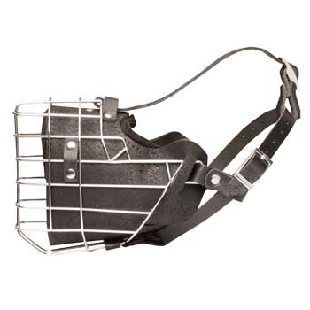 Leather Basket English Pointer Muzzle