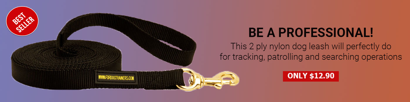 Nylon English Pointer Leash for Tracking and Training